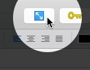 Scrivener Composition Mode button